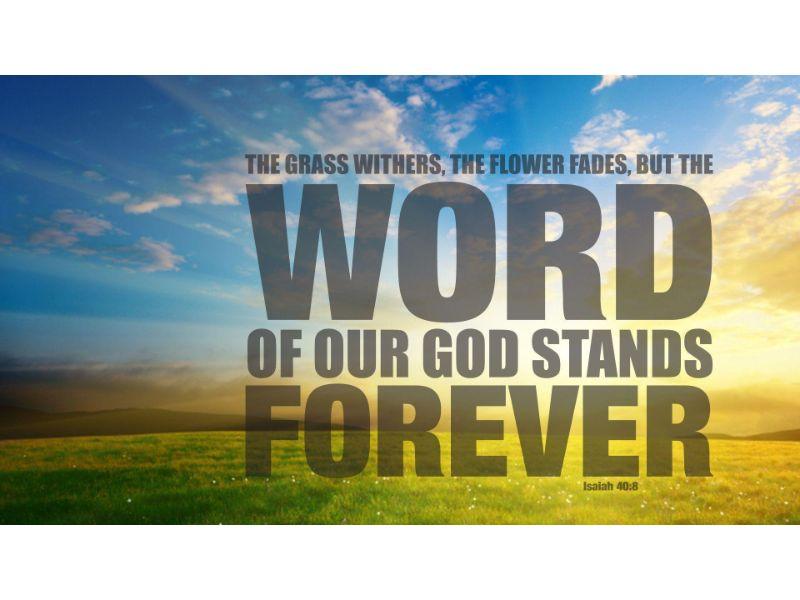 Bible Verse Images Free
