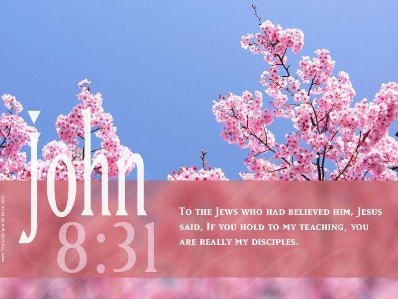 Bible Verse Pics Kjv