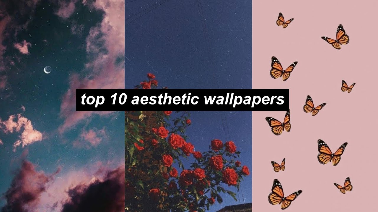 300+ Cute Vsco Wallpapers, Background, Photo & Aesthetic Images Download